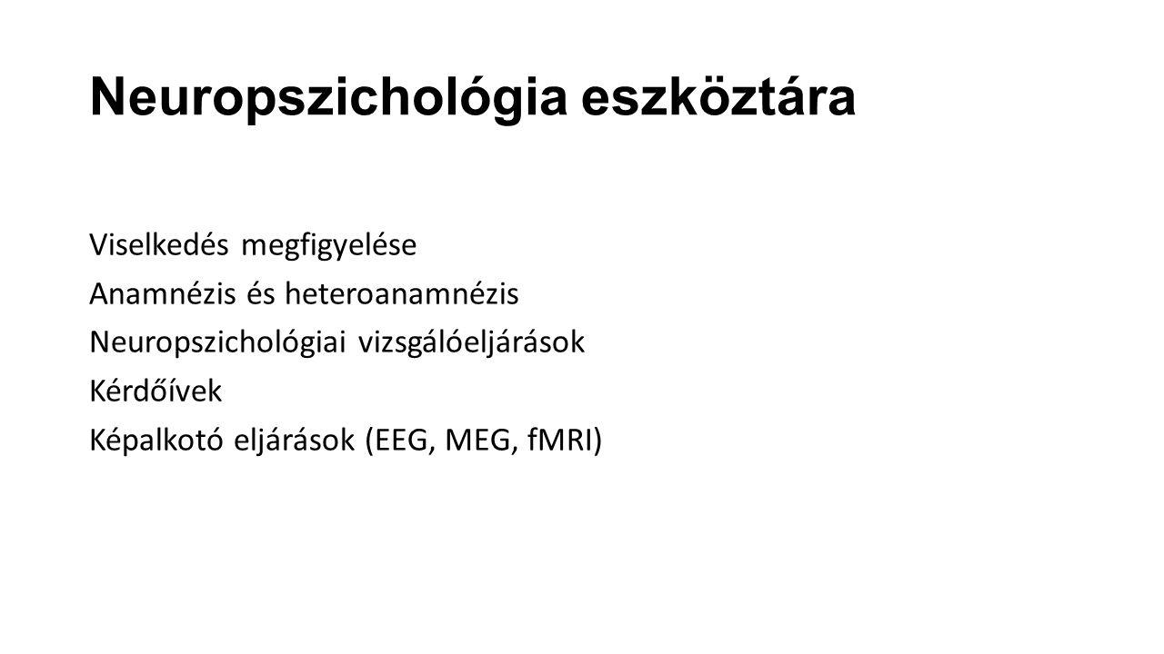 Neuropszichológia eszköztára
