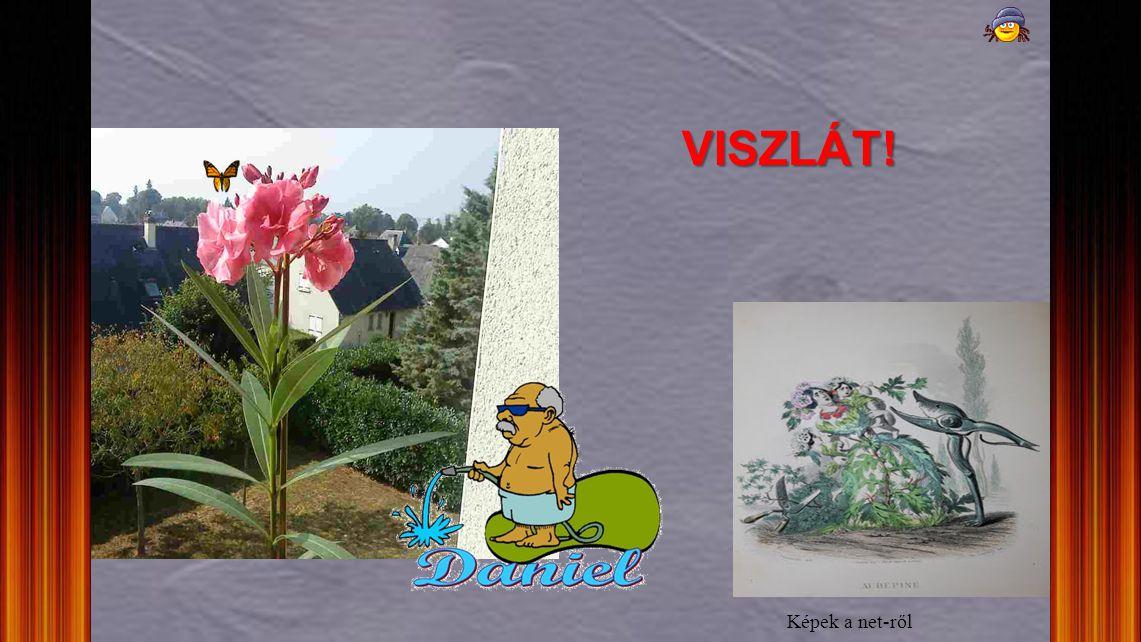 VISZLÁT! Képek a net-ről