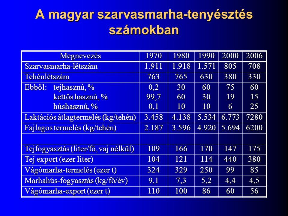 A magyar szarvasmarha-tenyésztés számokban