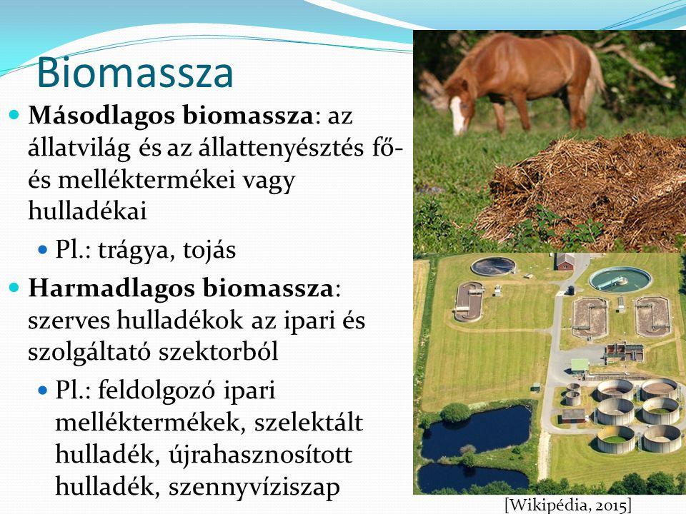 Biomassza Másodlagos biomassza: az állatvilág és az állattenyésztés fő- és melléktermékei vagy hulladékai.