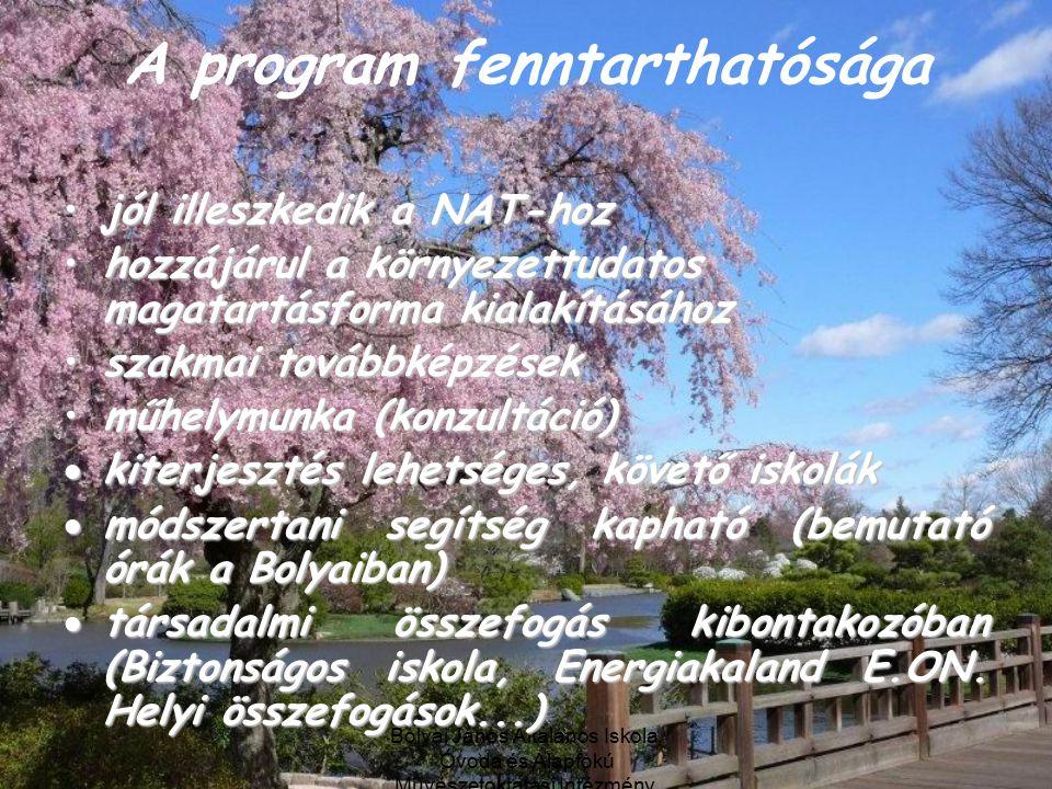 A program fenntarthatósága
