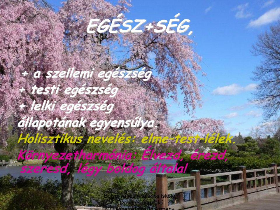 EGÉSZ+SÉG, + a szellemi egészség + testi egészség + lelki egészség