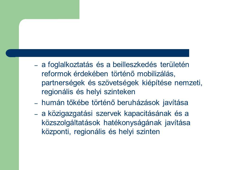 a foglalkoztatás és a beilleszkedés területén reformok érdekében történő mobilizálás, partnerségek és szövetségek kiépítése nemzeti, regionális és helyi szinteken