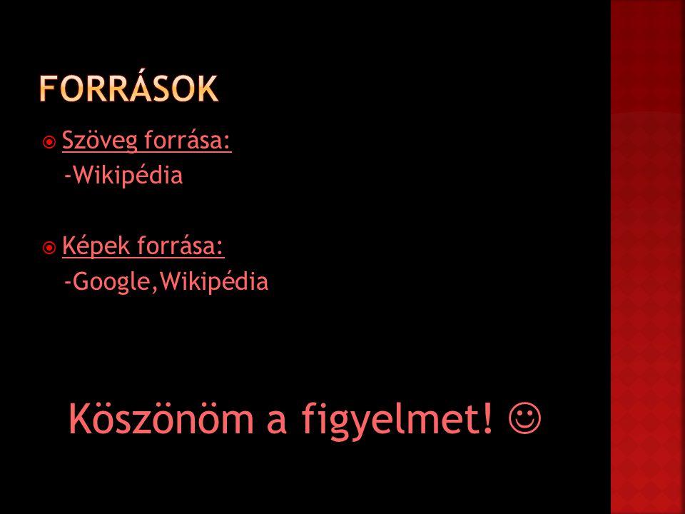 Köszönöm a figyelmet!  Források Szöveg forrása: -Wikipédia
