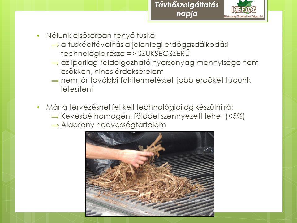 Távhőszolgáltatás napja. Nálunk elsősorban fenyő tuskó. a tuskóeltávolítás a jelenlegi erdőgazdálkodási technológia része => SZÜKSÉGSZERŰ.