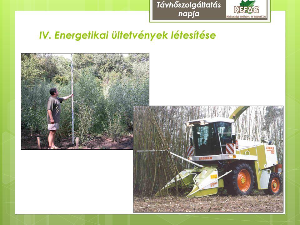 IV. Energetikai ültetvények létesítése