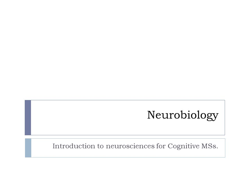 Introduction to neurosciences for Cognitive MSs.