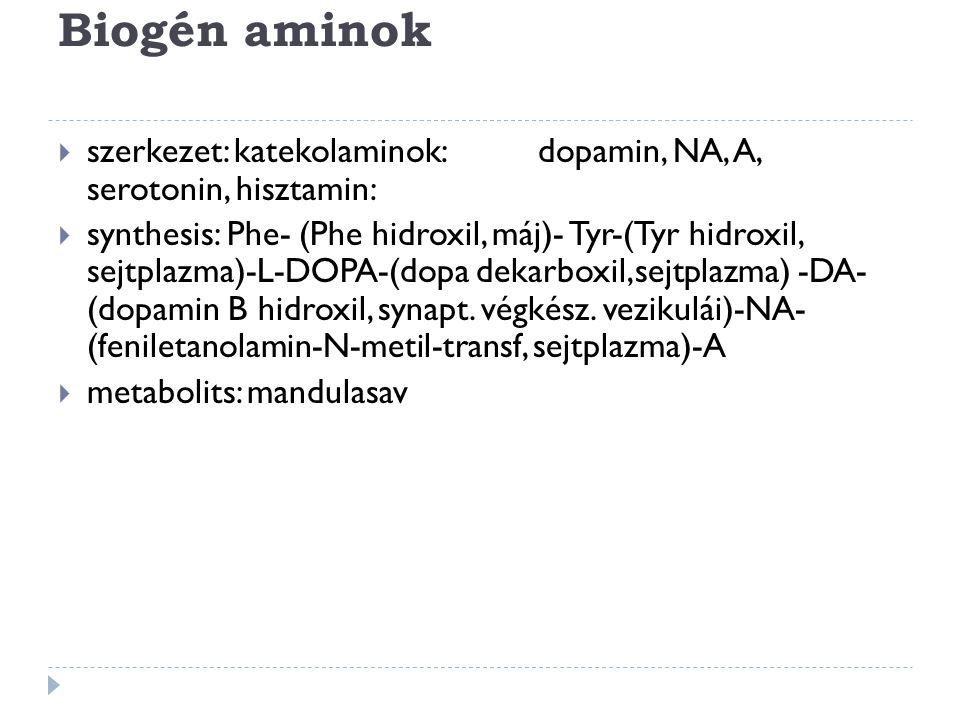 Biogén aminok szerkezet: katekolaminok: dopamin, NA, A, serotonin, hisztamin:
