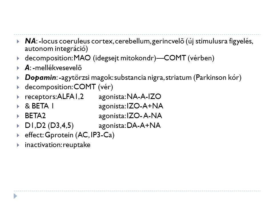 NA: -locus coeruleus cortex, cerebellum, gerincvelõ (új stimulusra figyelés, autonom integráció)