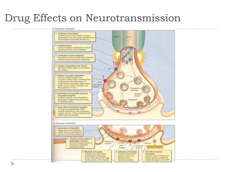 Drug Effects on Neurotransmission