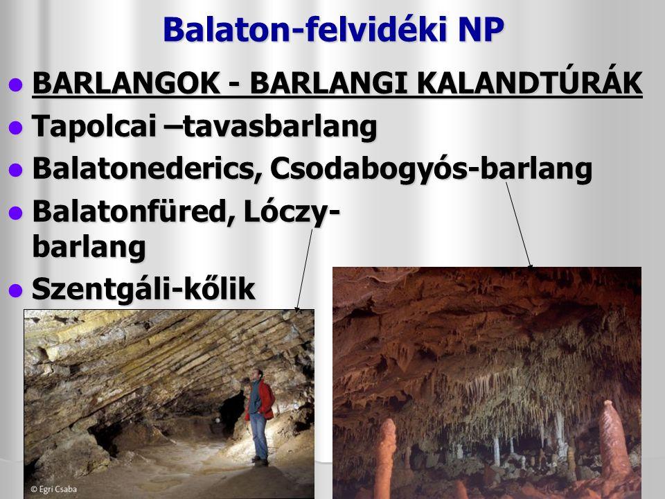Balaton-felvidéki NP BARLANGOK - BARLANGI KALANDTÚRÁK