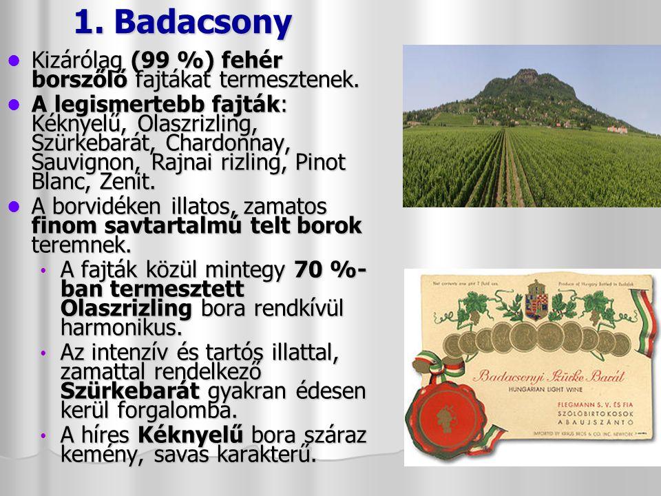 1. Badacsony Kizárólag (99 %) fehér borszőlő fajtákat termesztenek.