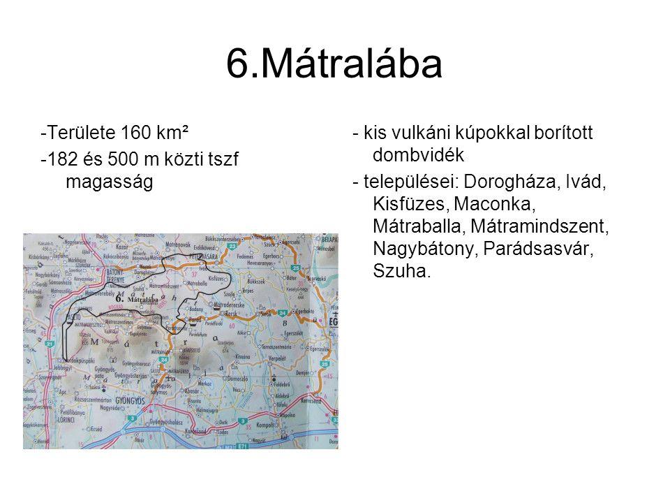 6.Mátralába -Területe 160 km² -182 és 500 m közti tszf magasság