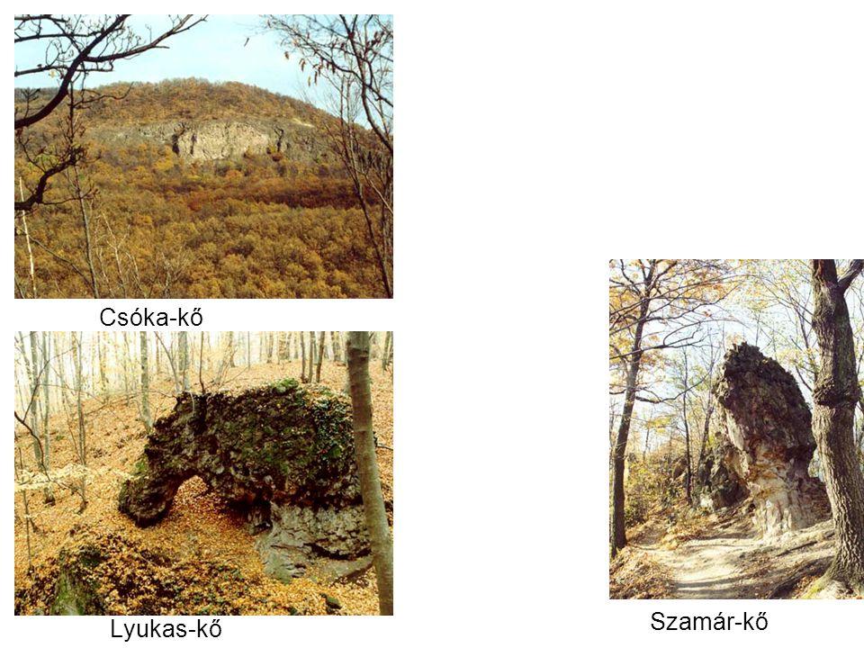 Csóka-kő Szamár-kő Lyukas-kő
