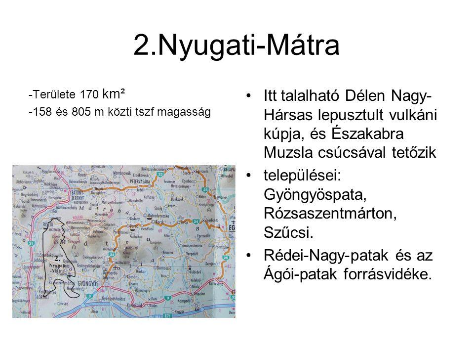 2.Nyugati-Mátra -Területe 170 km². -158 és 805 m közti tszf magasság.