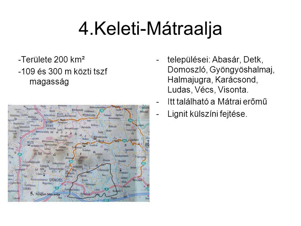 4.Keleti-Mátraalja -Területe 200 km² -109 és 300 m közti tszf magasság