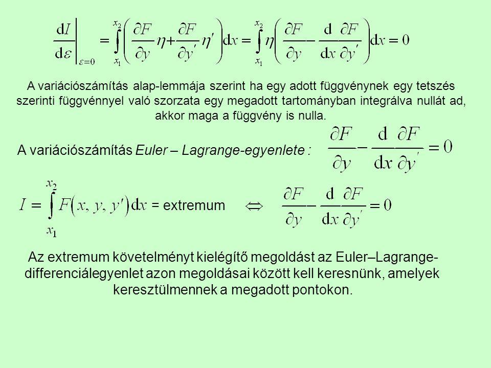 A variációszámítás Euler – Lagrange-egyenlete :