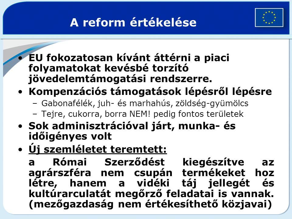 A reform értékelése EU fokozatosan kívánt áttérni a piaci folyamatokat kevésbé torzító jövedelemtámogatási rendszerre.