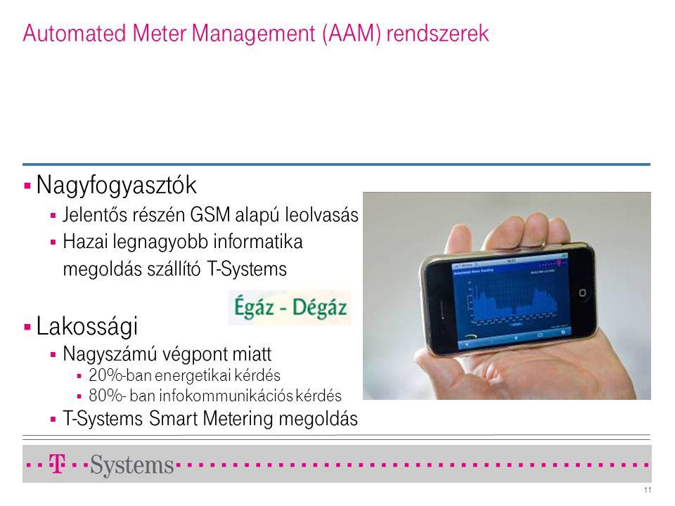 Automated Meter Management (AAM) rendszerek