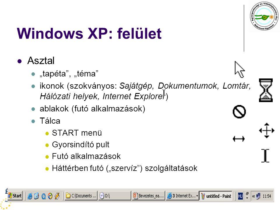 """Windows XP: felület Asztal """"tapéta , """"téma"""