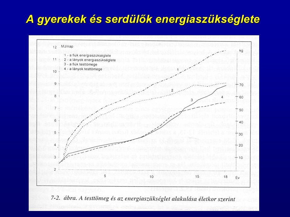 A gyerekek és serdülők energiaszükséglete