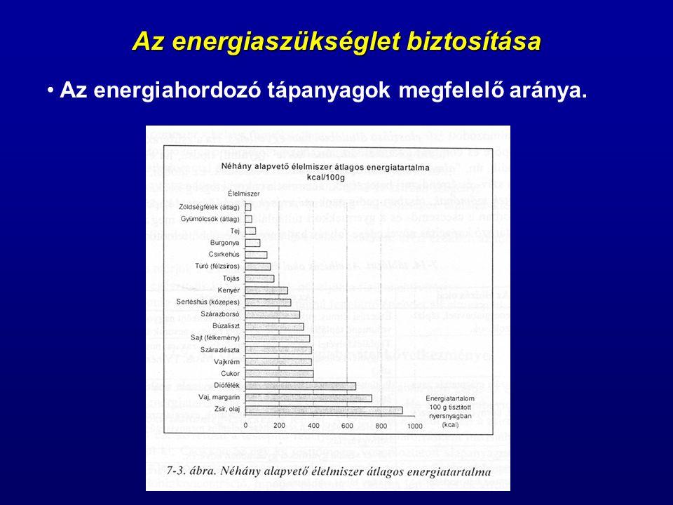Az energiaszükséglet biztosítása