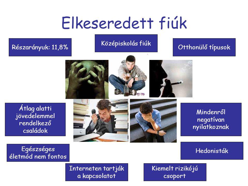 Elkeseredett fiúk Középiskolás fiúk Részarányuk: 11,8%