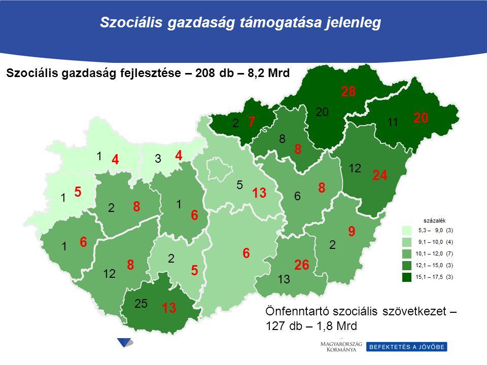 Szociális gazdaság támogatása jelenleg