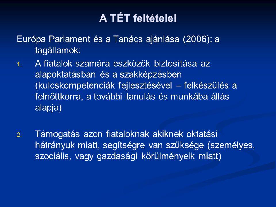 A TÉT feltételei Európa Parlament és a Tanács ajánlása (2006): a tagállamok: