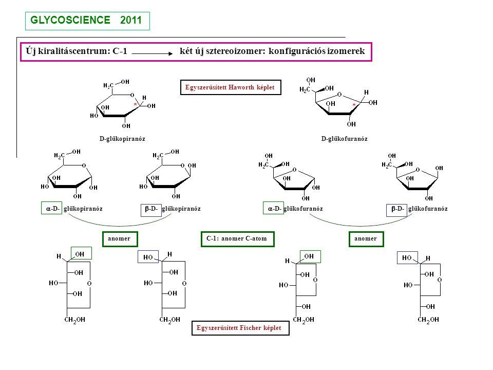 GLYCOSCIENCE 2011 Új kiralitáscentrum: C-1 két új sztereoizomer: konfigurációs izomerek.