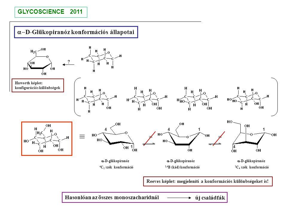 ≡ a-D-Glükopiranóz konformációs állapotai = = GLYCOSCIENCE 2011