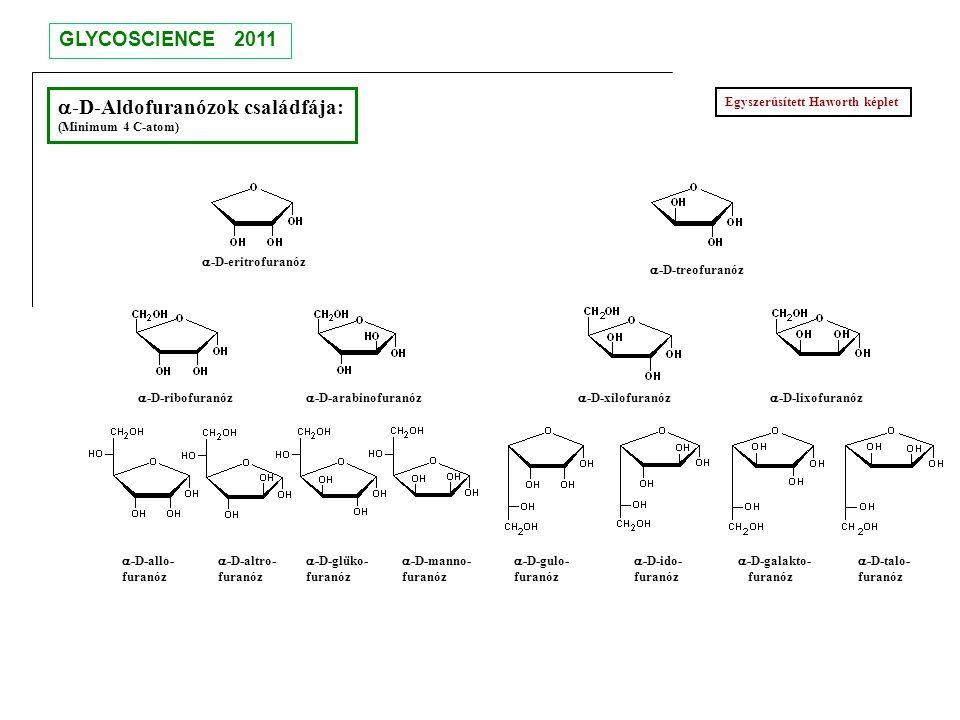 a-D-Aldofuranózok családfája: