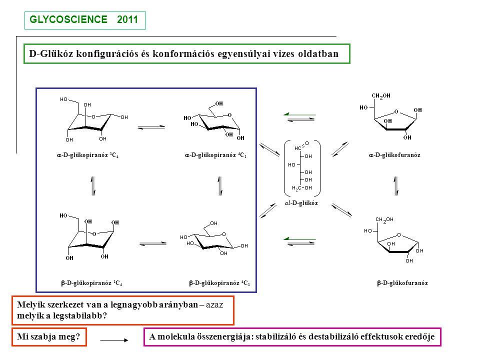 D-Glükóz konfigurációs és konformációs egyensúlyai vizes oldatban
