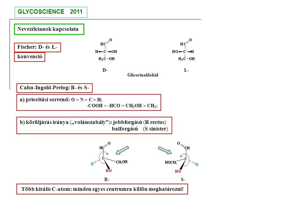 D- L- R- S- GLYCOSCIENCE 2011 Nevezéktanok kapcsolata