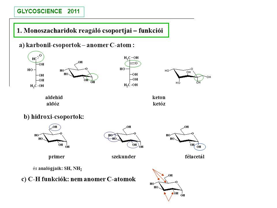 1. Monoszacharidok reagáló csoportjai – funkciói