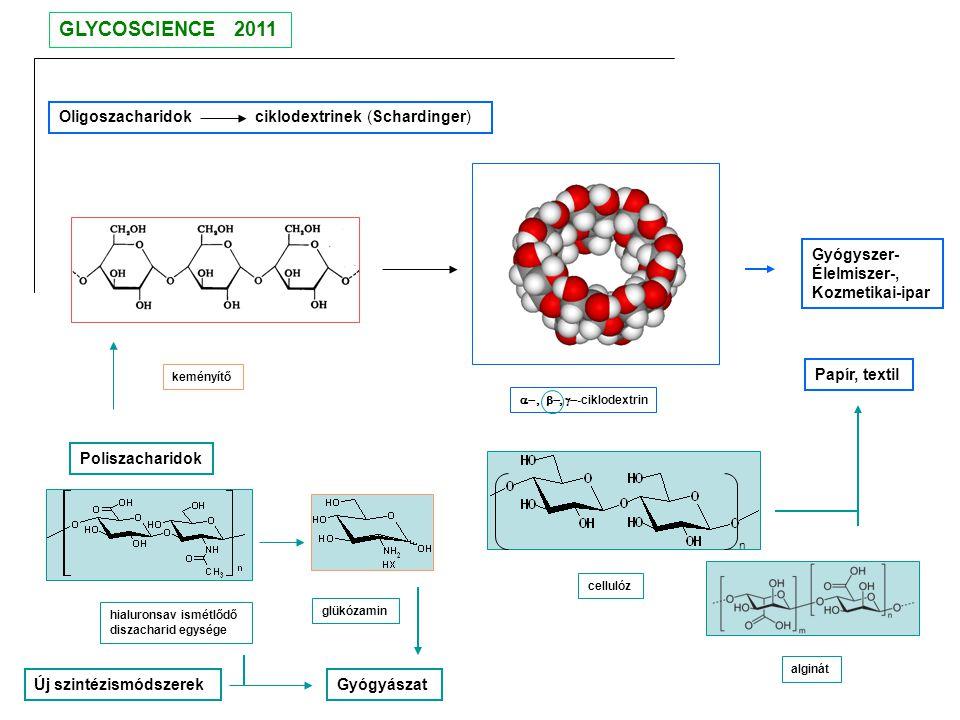 GLYCOSCIENCE 2011 Oligoszacharidok ciklodextrinek (Schardinger)