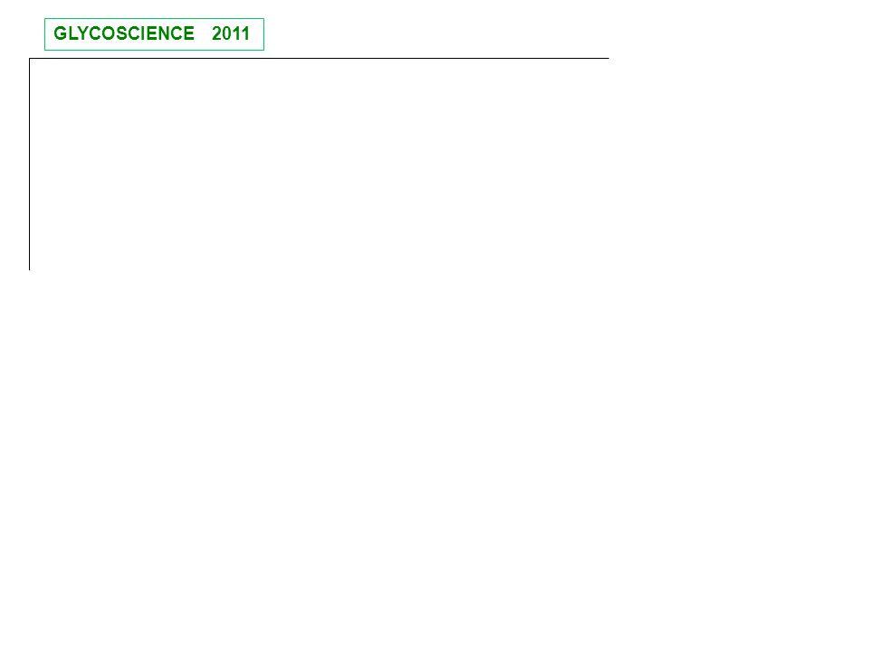 GLYCOSCIENCE 2011