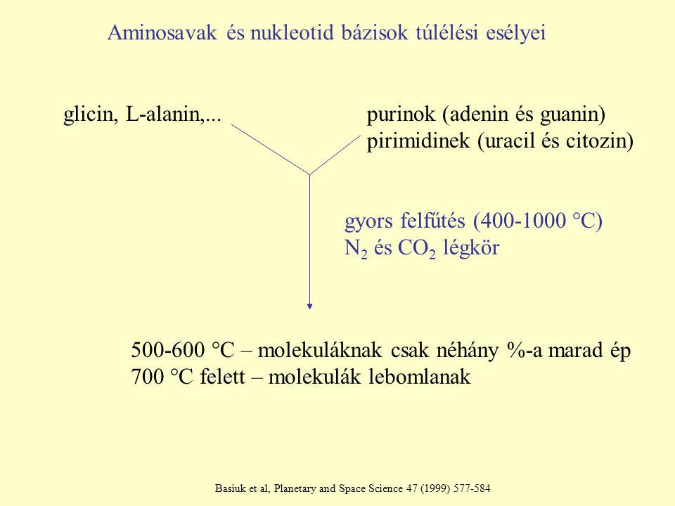 Aminosavak és nukleotid bázisok túlélési esélyei