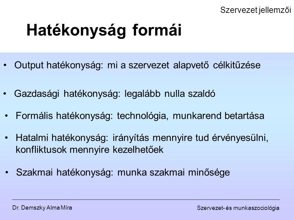 Szervezet jellemzői Hatékonyság formái. Output hatékonyság: mi a szervezet alapvető célkitűzése. Gazdasági hatékonyság: legalább nulla szaldó.