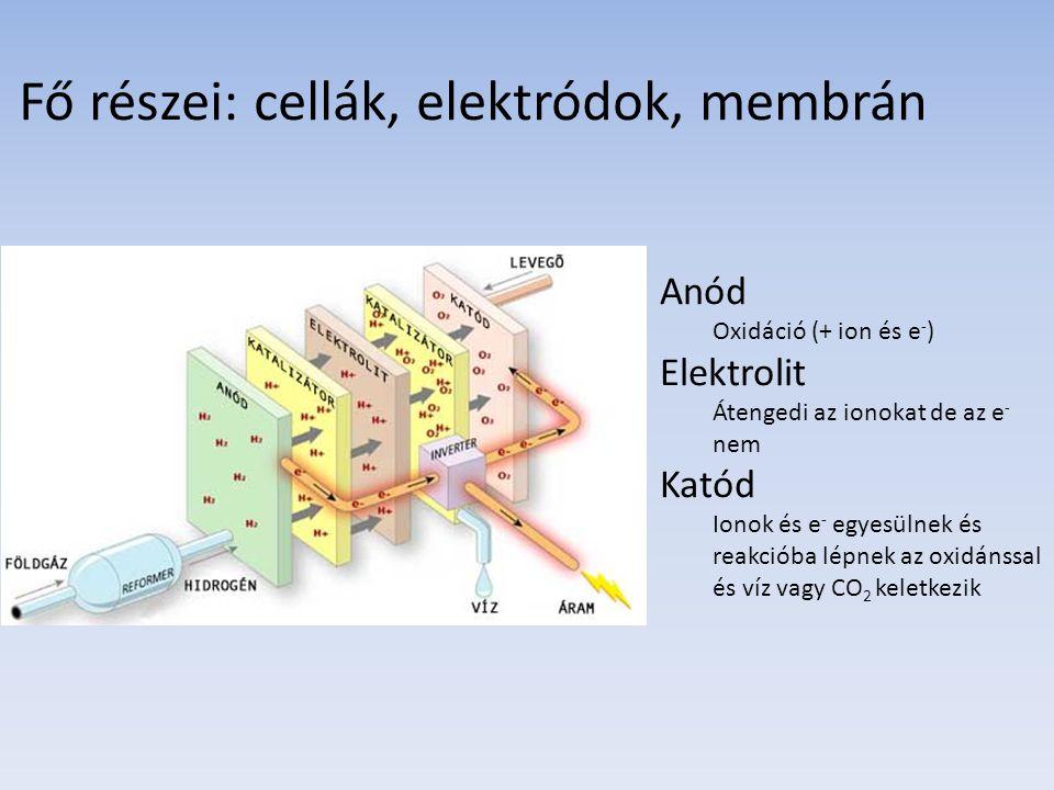 Fő részei: cellák, elektródok, membrán