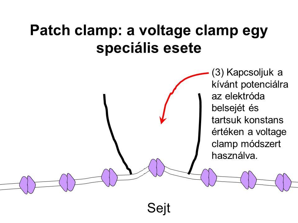 Patch clamp: a voltage clamp egy speciális esete