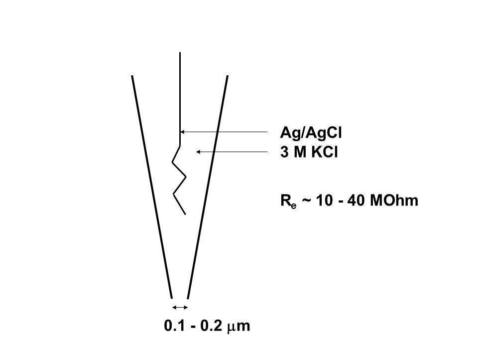 Ag/AgCl 3 M KCl Re ~ 10 - 40 MOhm 0.1 - 0.2 m