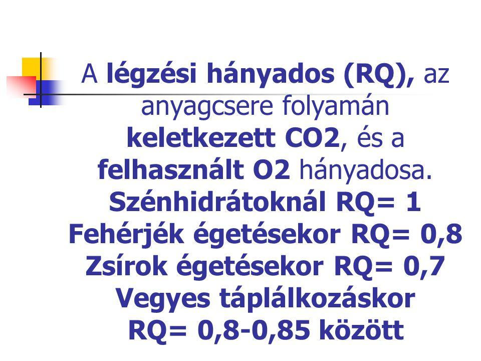 A légzési hányados (RQ), az anyagcsere folyamán keletkezett CO2, és a felhasznált O2 hányadosa.