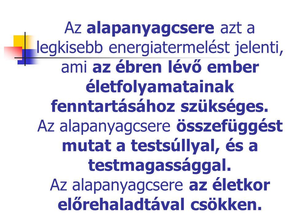 Az alapanyagcsere azt a legkisebb energiatermelést jelenti, ami az ébren lévő ember életfolyamatainak fenntartásához szükséges.