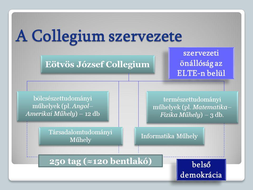 A Collegium szervezete