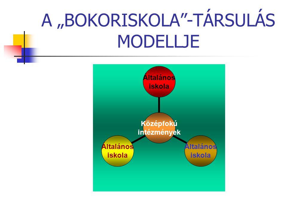 "A ""BOKORISKOLA -TÁRSULÁS MODELLJE"