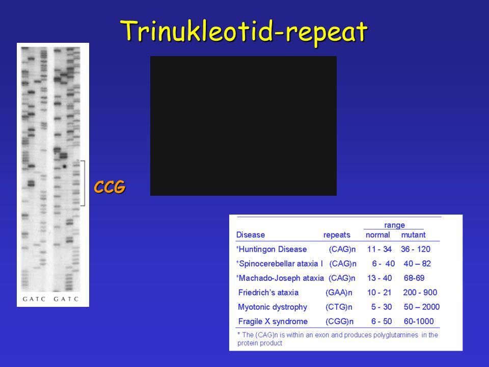 Trinukleotid-repeat CCG