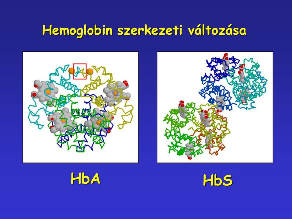 Hemoglobin szerkezeti változása