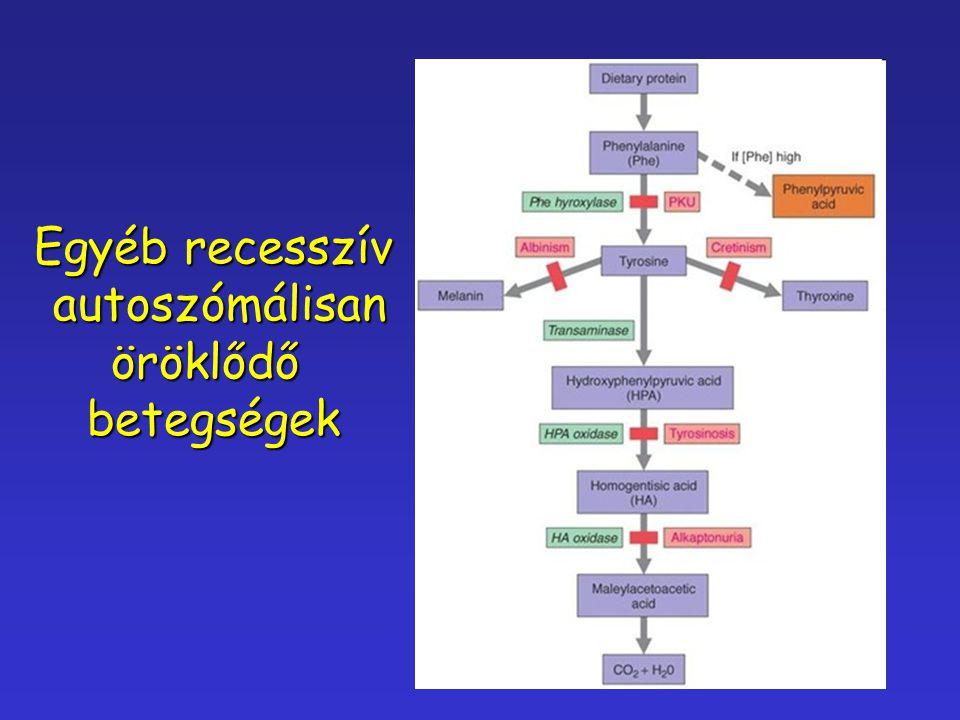 Egyéb recesszív autoszómálisan öröklődő betegségek
