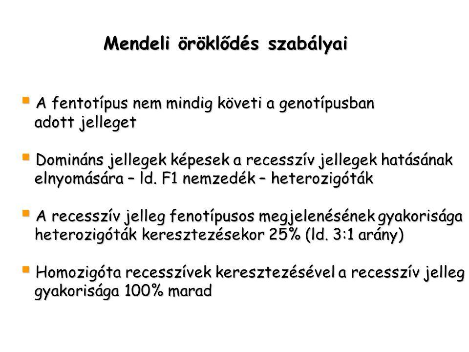 Mendeli öröklődés szabályai